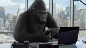 DGL_gorilla-glass-nbt-office-_(3122)